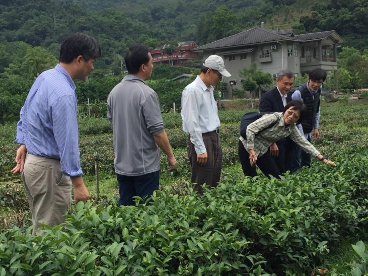 社區運用在地資源,發展茶葉觀光休閒產業,並將盈餘回饋居民,打造共好的社區生活圈。2018.04.26