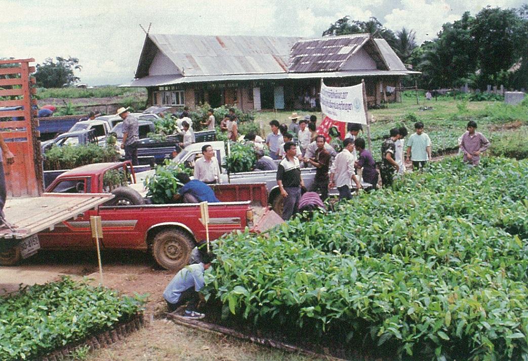 在每年雨季,均大量分發各村桃、李、梅、芒果、荔枝、茶樹等種苗,每次約十五至二十萬株,輔導難胞普遍種植