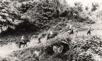 在叢山蠻荒中闢路展開人道關懷-1959年5月本會方治秘書長前往泰緬慰問難胞,當時山徑崎嶇,交通全賴騎乘騾馬或步行。